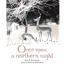 Once Upon a Northern Night by Jean E. Pendziwol (2013-07-30)
