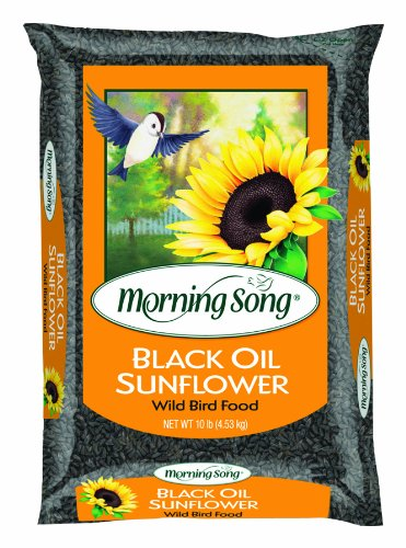 Morning Song 11996 Black Oil Sunflower Wild Bird Food, 10-Pound (Sunflower Wild Bird Seed)