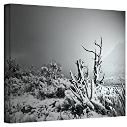 Art Wall You Just Do Wrapped Canvas Art By Mark Ross, 24 By 32-inch