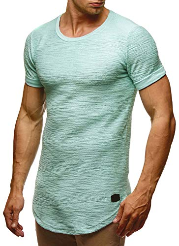 LEIF NELSON mens t-shirt crewneck slim fit short