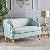 Shelby Mid Century Modern Beige Fabric Loveseat (Light Blue) For Sale