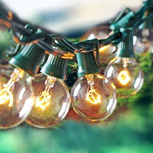 Escolite Outdoor String Light with G40 Clear Globe Bulbs - UL Listed, 25-Feet, Green (Clear Globe String Lights)