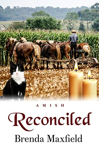 Reconciled (Hannah's Story Book 3) -