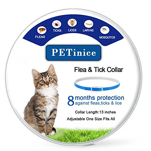 Flea and Tick Prevention for Cats,Flea Collar for Cats-Waterproof and Hypoallergenic Repels Pests Cat Collars,8 Month Protection,One Size Fits All(Adjustable)-Blue