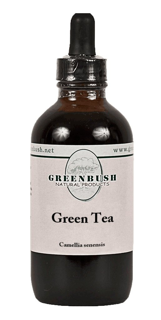 Green Tea Concentrated Alcohol-Free Liquid Extract. Value Size 4oz Bottle (120ml) 240 Doses of 1/2 ml. Weight Loss, Fat Oxidation, Metabolism Boost, Skin Health by Greenbush Natural Products