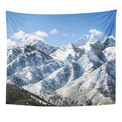 Seenpin Tapestry Utah Wasatch Mountains in Ogden Just North of Salt Lake City Which is Popular for Skiing Snowboarding Home Decor Wall Hanging for Living Room Bedroom Dorm 50x60 Inches