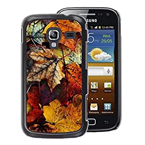 A-type Arte & diseño plástico duro Fundas Cover Cubre Hard Case Cover para Samsung Galaxy Ace 2 (Decay Autumn Yellow Pastel)
