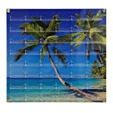 Source One 48-Pocket Wall Mount Business Card Holder (Palm Trees)