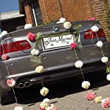 Weddingstar 164-10 Just Married License Plate by Weddingstar Inc.