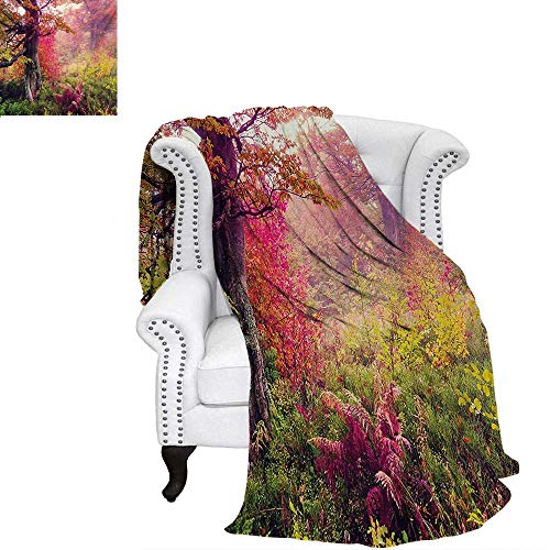 warmfamily Forest Summer Quilt Comforter Fairy Majestic Landscape with Autumn Trees in Forest Natural Garden in Ukraine Digital Printing Blanket 60