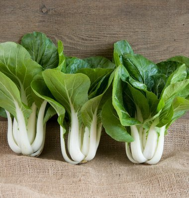 David's Garden Seeds Pac Choi Win-Win D2698PAC (Green) 200 Hybrid Seeds