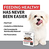 JustFoodForDogs PantryFresh Dog Food, Human Quality Ingredients Natural Ready to Serve Food for Dogs - Beef & Russet Potato