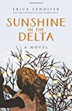 Sunshine in the Delta: A Novel