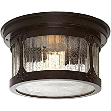Designers Fountain 20935-CHN Canyon Lake Ceiling Lights, Chestnut
