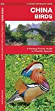 China Birds: A Folding Pocket Guide to Familiar Species (A Pocket Naturalist Guide)
