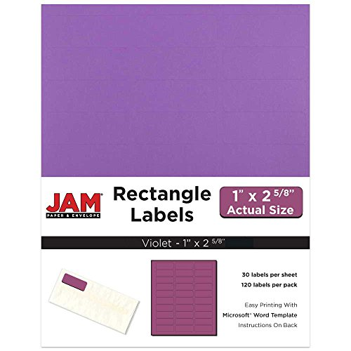 (JAM PAPER Mailing Address Labels - Standard Mailing - 1 x 2 5/8 - Violet - 120 Shipping Labels/Pack)