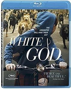 Cover Image for 'White God'