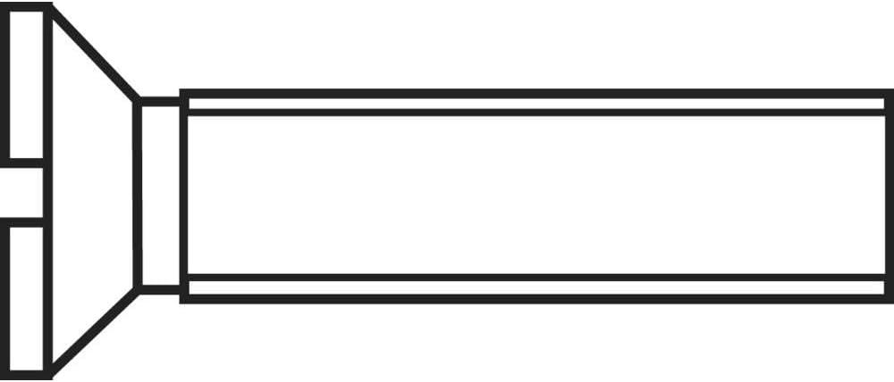 Toolcraft 100ER SENKSCHR Schlitz DIN963 4.8 M2X10