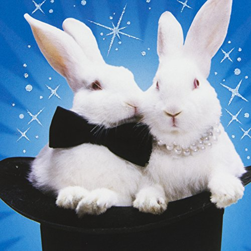 Hallmark Shoebox Funny Anniversary Greeting Card (Magic Bunnies) Photo #6