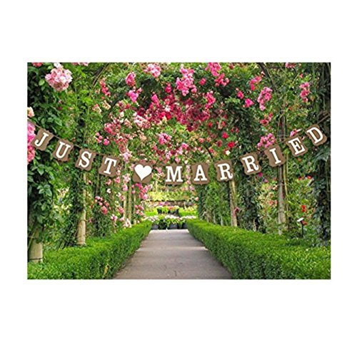 Wedding reception accessories amazon stonges just married wedding bunting cardboard wedding decoration vintage junglespirit Image collections