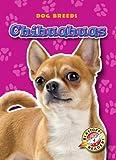 Chihuahuas, Sara Green, 1600142982