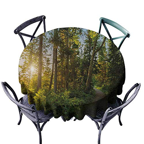 VIVIDX Spill-Proof Table Cover,Landscape,National Park in Cape Breton Highlands Canada Forest Path Trees Tranquility Photo,Modern Minimalist,70 INCH,Blue Green (Highland Park Bench)
