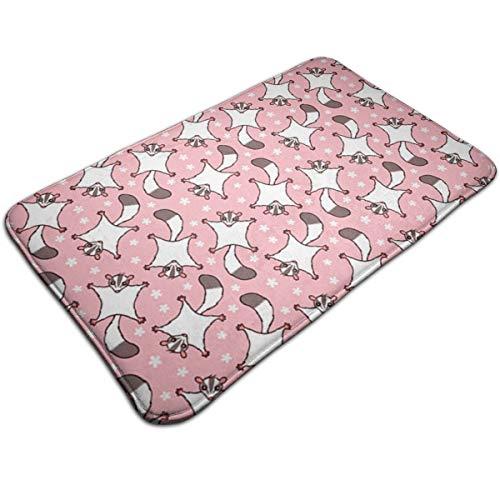 ZGSDYMMB Sweet Sugar Glider with Flowers Pink Bath Mats Doormats Non Slip Absorbent Microfiber -