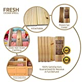 Wood Smith USA Cedar Wood Panels | 10 Pack | Drawer Liners | Clothing Storage | Natural | Let Nature Do The Job