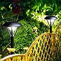 OxyLED Solar Path Lights