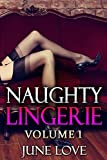 Naughty Lingerie: Volume 1: A Sexy Photo Book of Erotic Photography