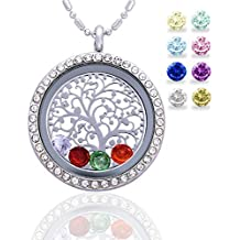 Family Tree of Life Floating Living Memory Locket Pendant Necklace with Birthstone, All Charms Included