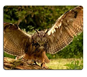 Nature Birds Animals Owls Take Off Mouse Pads Customized Made to Order Support Ready 9 7/8 Inch (250mm) X 7 7/8 Inch (200mm) X 1/16 Inch (2mm) High Quality Eco Friendly Cloth with Neoprene Rubber MSD Mouse Pad Desktop Mousepad Laptop Mousepads Comfortable Computer Mouse Mat Cute Gaming Mouse pad