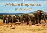 African Elephants in Addo 2018: Beautiful Photographs of Wild Elephants in the Addo National Elephant Park/South Africa. (Calvendo Animals)