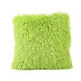Warm Plush Solid Color Home Body Winter Pillowcases,Highpot Simpel Style Design Multiple Colour Square Plush Cover Cushion (Green)