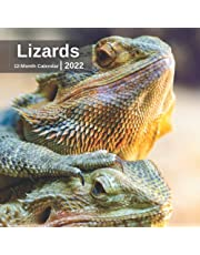 Lizards Calendar 2022 - 12 Months of High-Resolution Lizard Photos Including Official Holiday Prompts - US/UK/CA + Notes Space