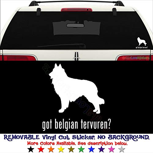 GottaLoveStickerz Got Belgian Tervuren Dog Pet Permanent Vinyl Decal Sticker for Laptop Tablet Helmet Windows Wall Decor Car Truck Motorcycle - Size (05 Inch / 13 cm Wide) - Color (Gloss White)