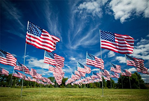 CSFOTO 6x4ft Background for Rows of American Flags Photography Backdrop Star Strips Memorial Patriotic Grass Independence Labour Day Pride Celebrations Holiday Photo Studio Props - Patriotic Row