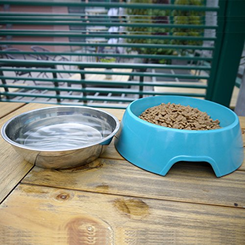 Mainstreet Dog Bowls Stainless Steel Bamboo Fiber Water and Food Feeder with Stand Animal Pet Food Holder Eco-Friendly for Dogs Cats (Blue, Medium) by Mainstreet (Image #4)