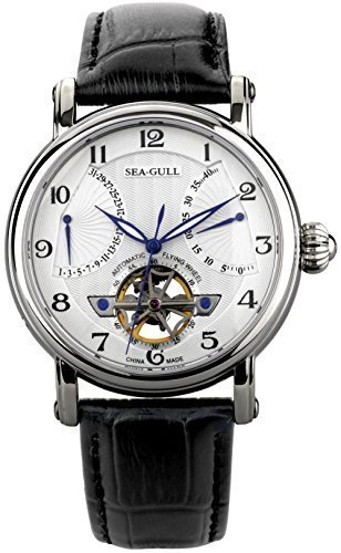 Luxury Brand Seagull Double Retrograde Energy Display Automatic Men's Wrist Watch 819.317 (Luxury Watch Retrograde)