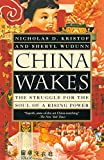 Books : China Wakes: The Struggle for the Soul of a Rising Power