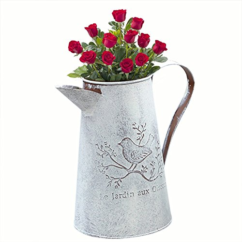Kettle Planter - Tin Gardening Watering Can, Tinplate Retro Watering Can Kettle Garden Flower Pot Plant Planter Galvanized Watering Cans for Gardening Or Floral Arrangements (Tall)