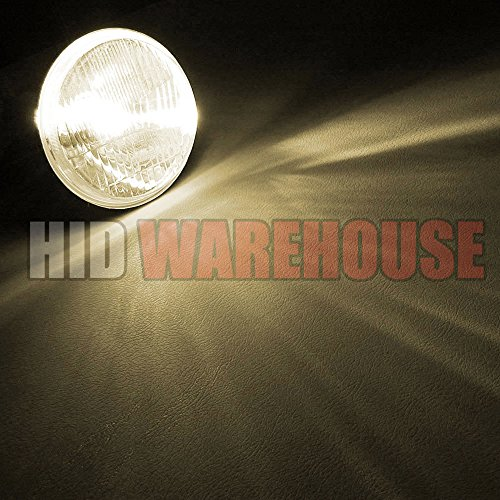 HID-Warehouse HID Xenon Replacement Bulbs - H11 4300K - Bright Daylight (1 Pair) - 2 Year Warranty by HID-Warehouse (Image #3)'