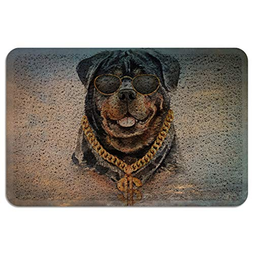 PacoShower Door Mats for Entryway 18