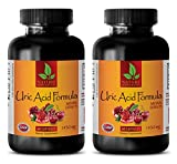 Energy Boost and Focus Supplement - URIC Acid Formula - Natural EXTRACTS - Kidney Support - 2 Bottles (120 Capsules)