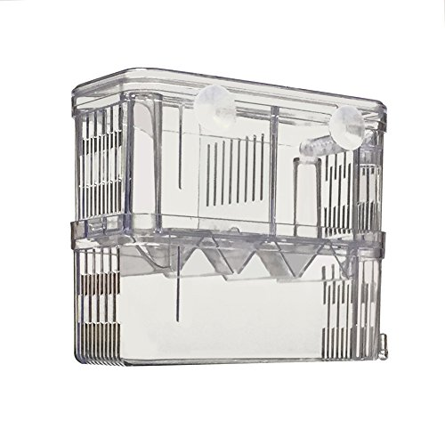 Petzilla PBI-2 Aquarium Fish Breeder Box for Hatchery, 6″x3.5″x7.3″ 51uu3h3NfhL the pet shop nearby me The pet shop nearby me 51uu3h3NfhL