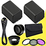 TWO BP-819 Lithium Ion Replacement Battery + 43mm 3 Piece Filter Kit + Wide Angle Lens + 2x Telephoto Lens + Mini HDMI Cable for Canon Vixia HFM40 HFM41 HFM400 HV30 Digital Camcorders DavisMAX BP819 Accessory Bundle