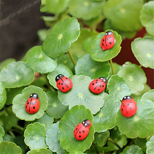 Danmu Self-Adhesive Ladybugs Miniature Plant Pots Bonsai Craft Micro Landscape DIY Decor 20pcs