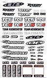 Team Associated 31299 TC6 Decal Sheet