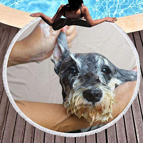 Lokjjtvfrxcgtg Schnauzer Dog Grooming Multi-Purpose Thick Round Beach Towel Blanket Circular Large Microfiber Terry Picnic Carpet Yoga Mat with Fringe 59 in