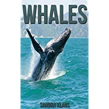 Childrens Book: Amazing Facts & Pictures about Whales